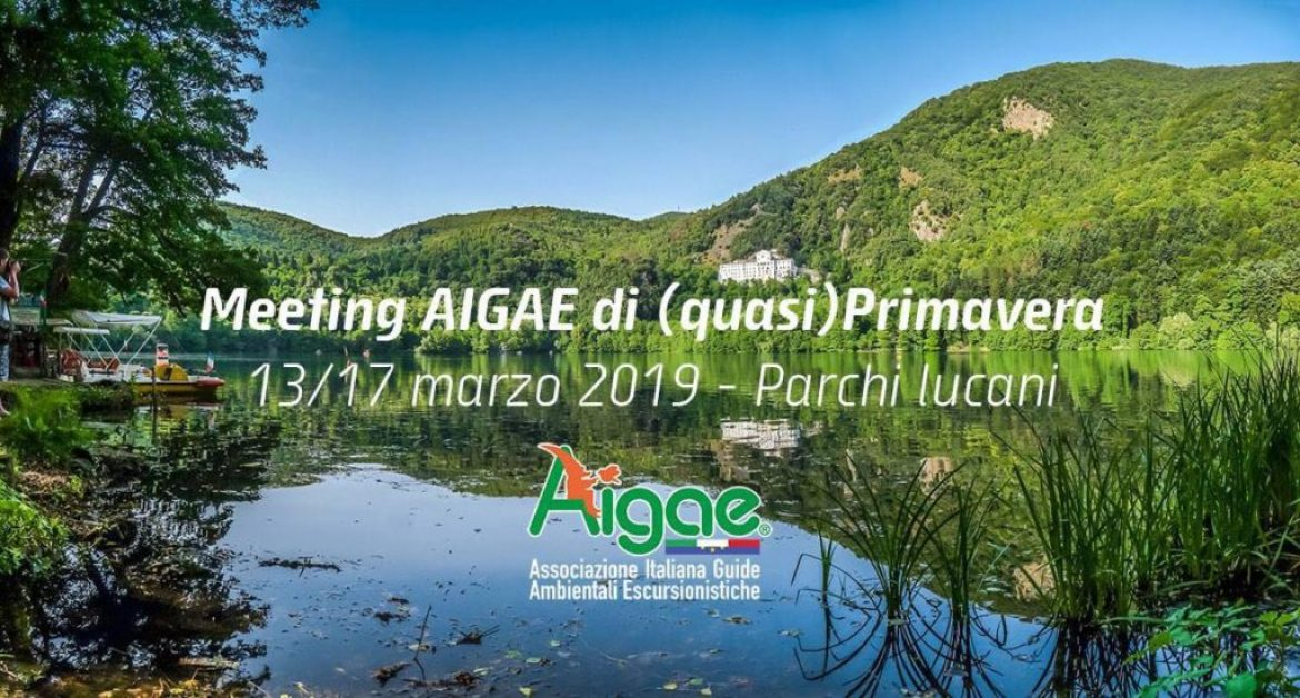 Meeting AIGAE di primavera 2019